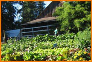 garden-barn1