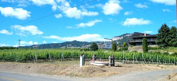 Vineyard And Home For Sale Oroville Washington Greenhorns