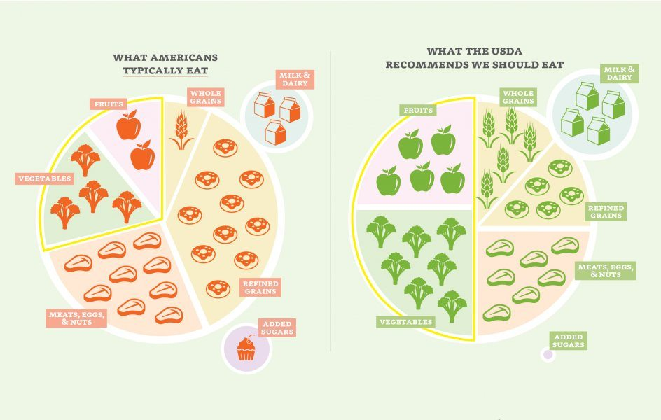 plant_the_plate_infographic_final_1-01