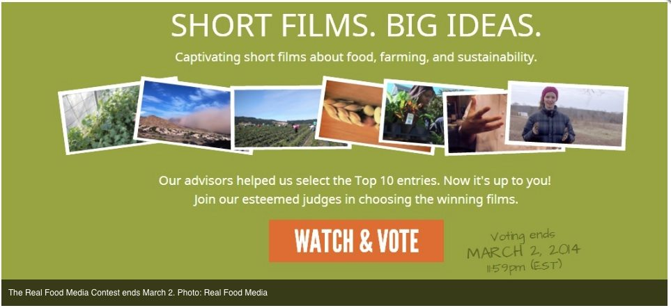 real food media voting