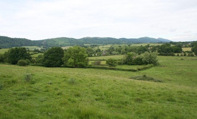Enclosure_on_Coombe_Green_Common_-_geograph.org.uk_-_481337