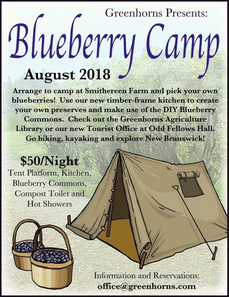 blueberry camp flyer